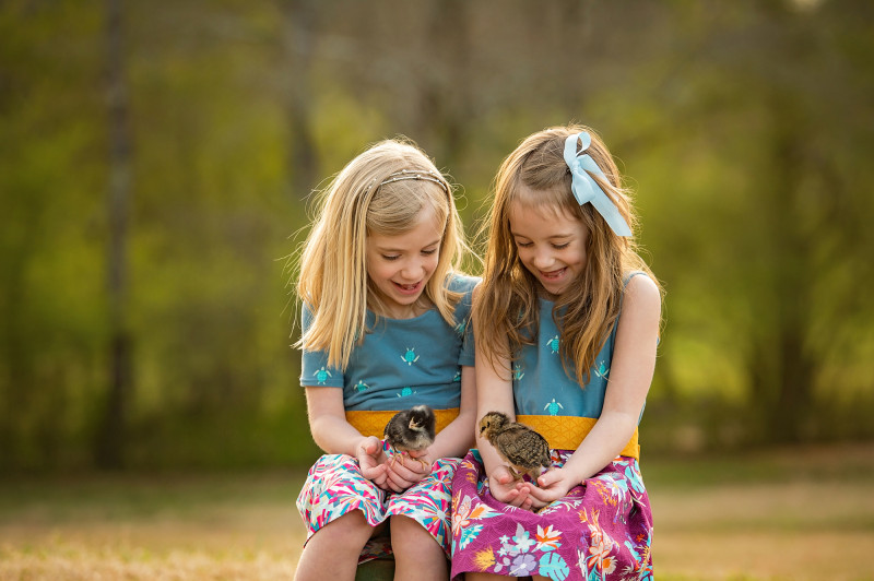 Farm-Photographer-Canton-Roswell-GA-Chicks