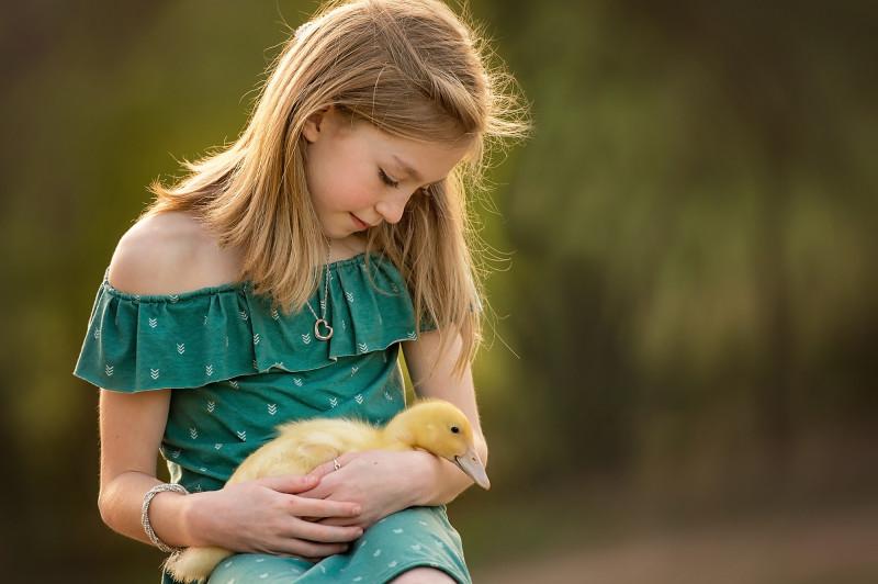 Farm-Photographer-Canton-Roswell-GA-ducks