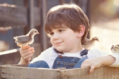 canton-children-photography-chicks
