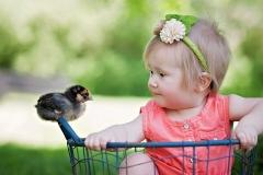 canton-photographer-farm-chicks