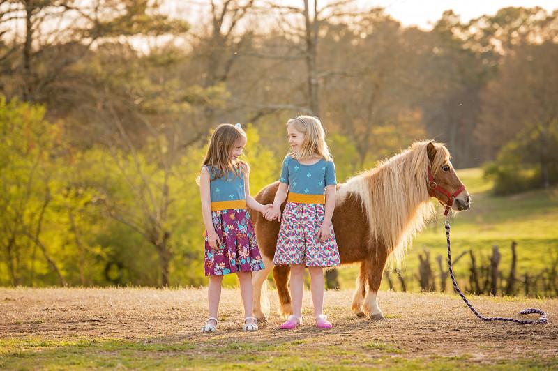 Farm-Photographer-Canton-Roswell-GA-ponies