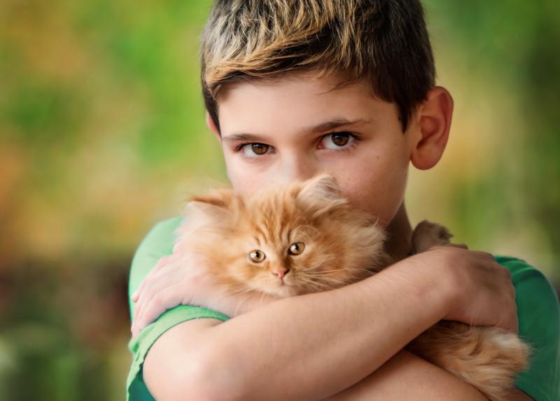 kittens_2018-6847e