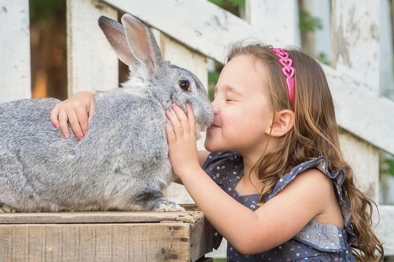 Bunny-Kisses