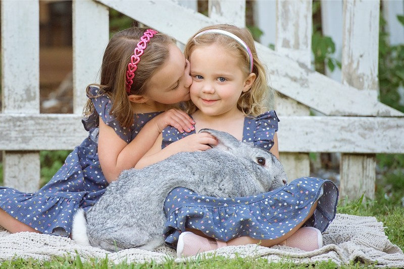 Girls-Bunny-Snuggles-Freckled-Flower-Photography