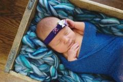 dunwoody newborn photography