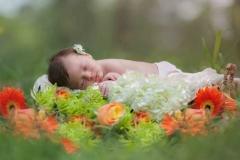 newborn photographer flowers milton-sleepy
