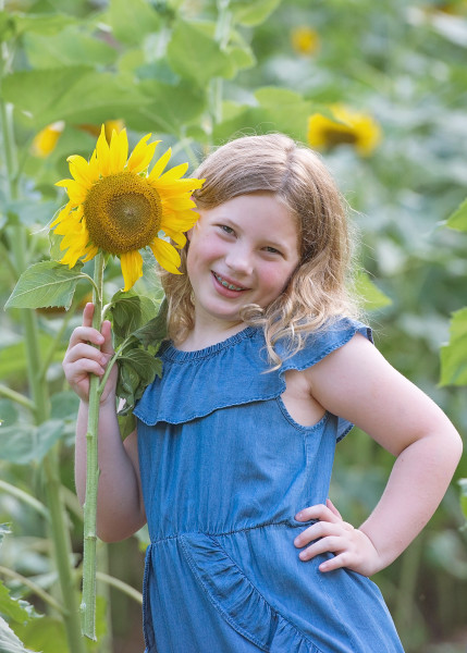 Sunflowers-7092-27-Recoverede