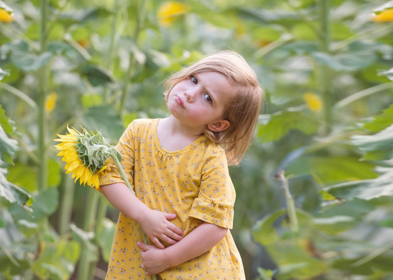 Sunflowers-7157-60-Recoverede