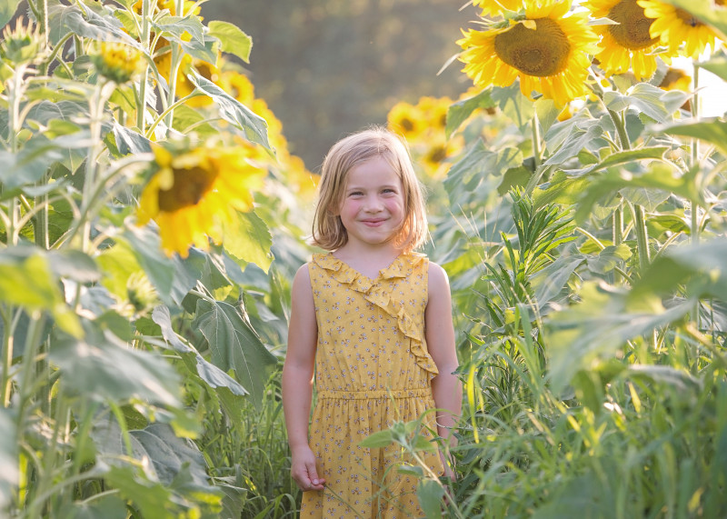 Sunflowers-7174-69-e