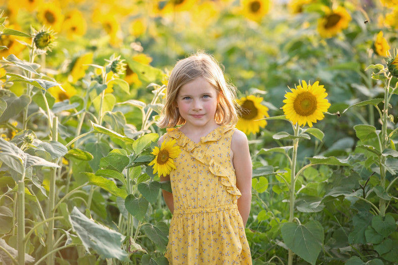 Sunflowers-7359-153e