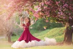 Flowering-Tree-Images-copy