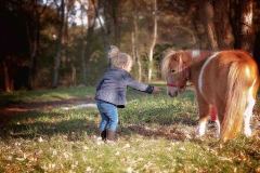 canton_child_photographer_pony