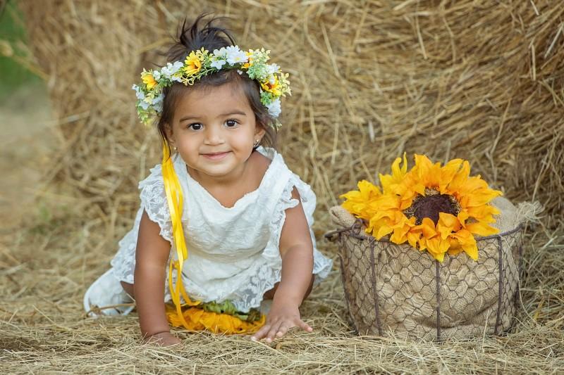 Patel-Sunflowers-2020-8047e