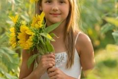 Sunflower-Close-Up