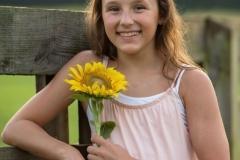 Sunflower-pics
