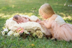 newborn photos toddler photography roswell