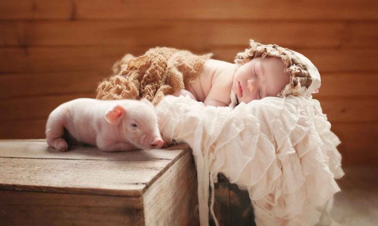 Roswell-newborn-photography-at-home-piggy