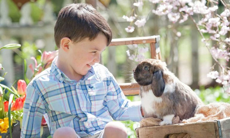 Alpharetta Photography Child With Bunny