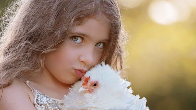 girl-with-chicken-photography