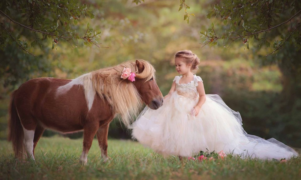 canton photographer, pony princess