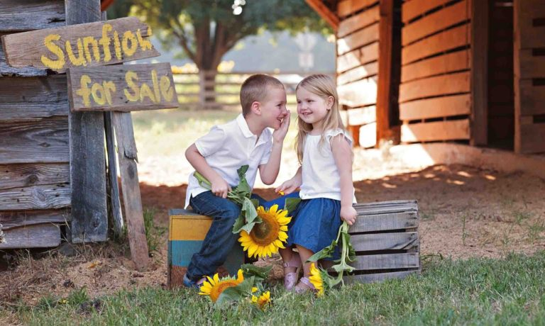 siblings-sunflower-photography