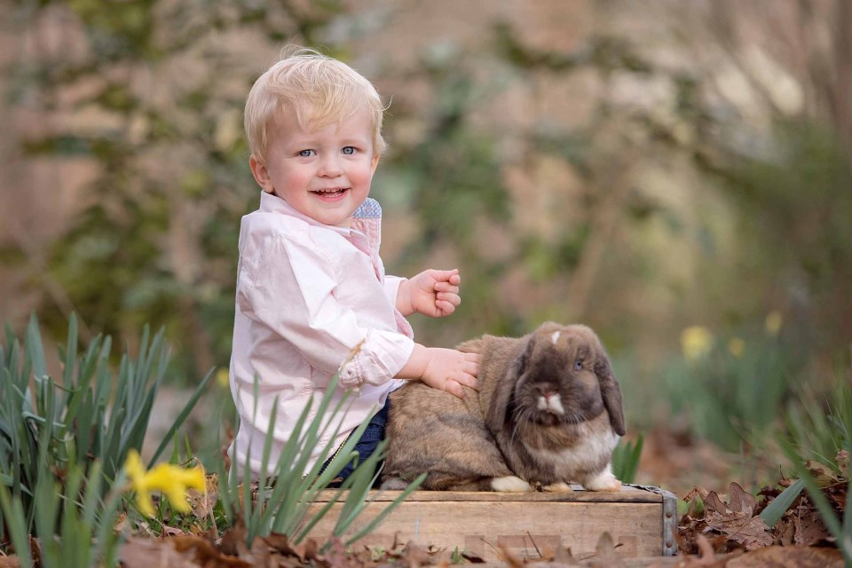 child-photographer-bunnies