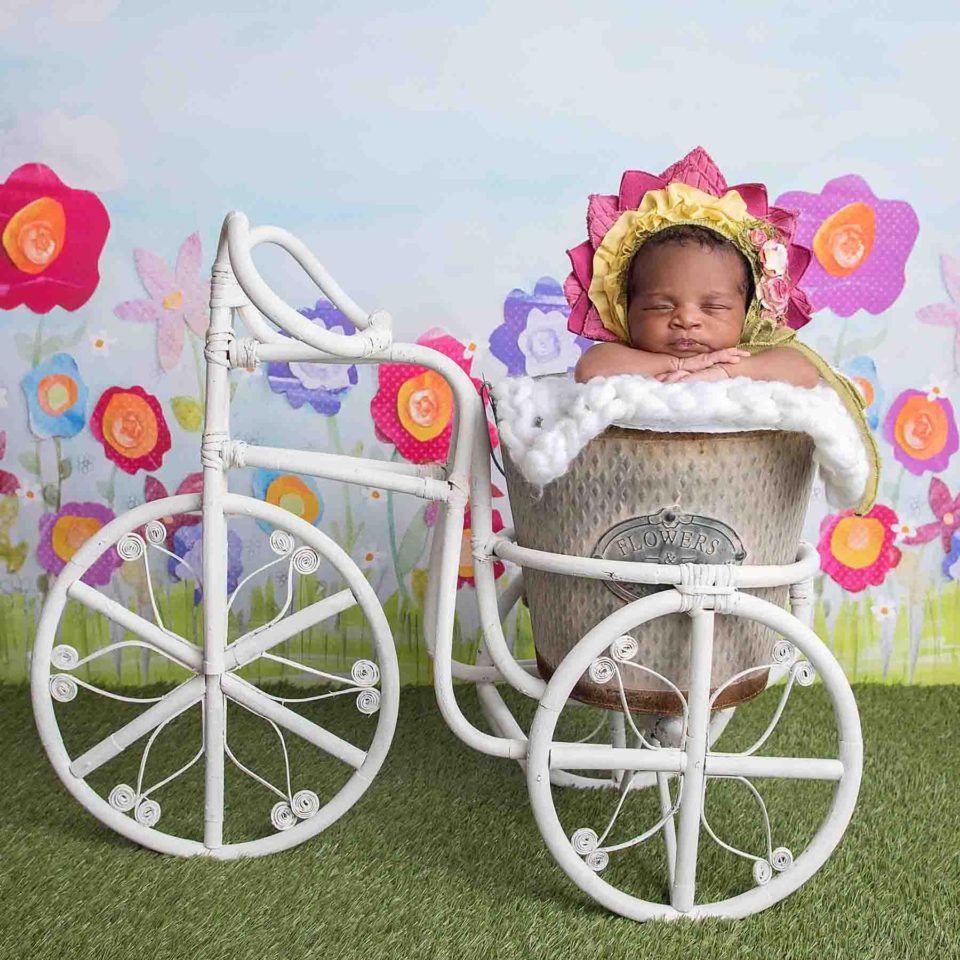 Newborn-Photography-Roswell-Flower-Sunny