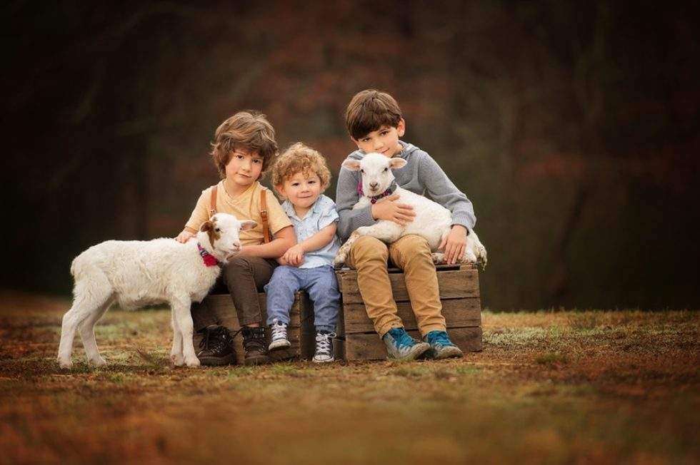 The Art of Professional Child Photography With Animals