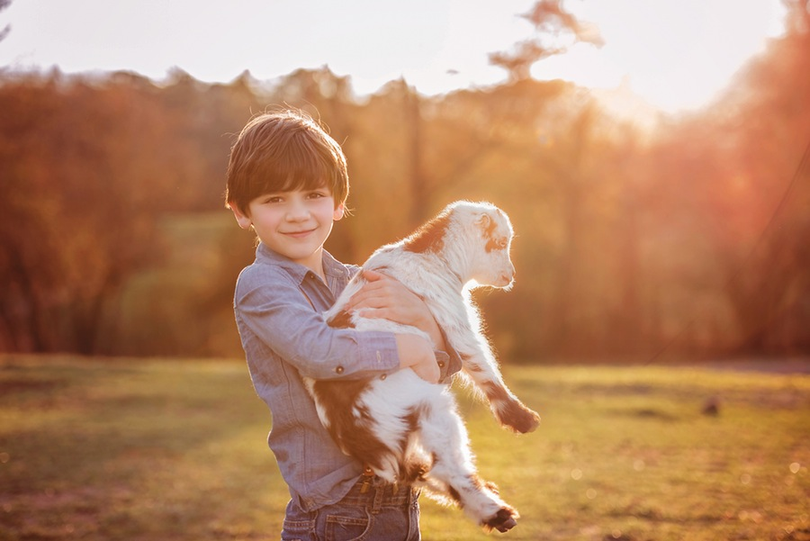 Professional child photography with animals
