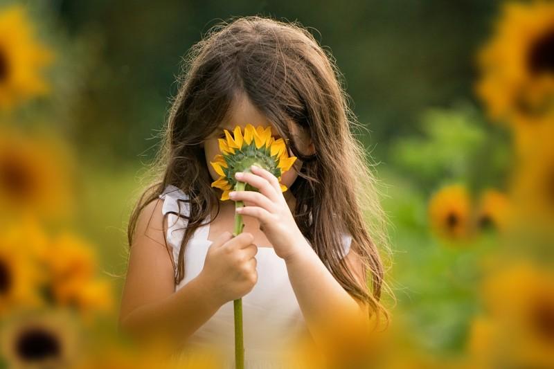 sunflower-portraits-2020-4842e2.jpg